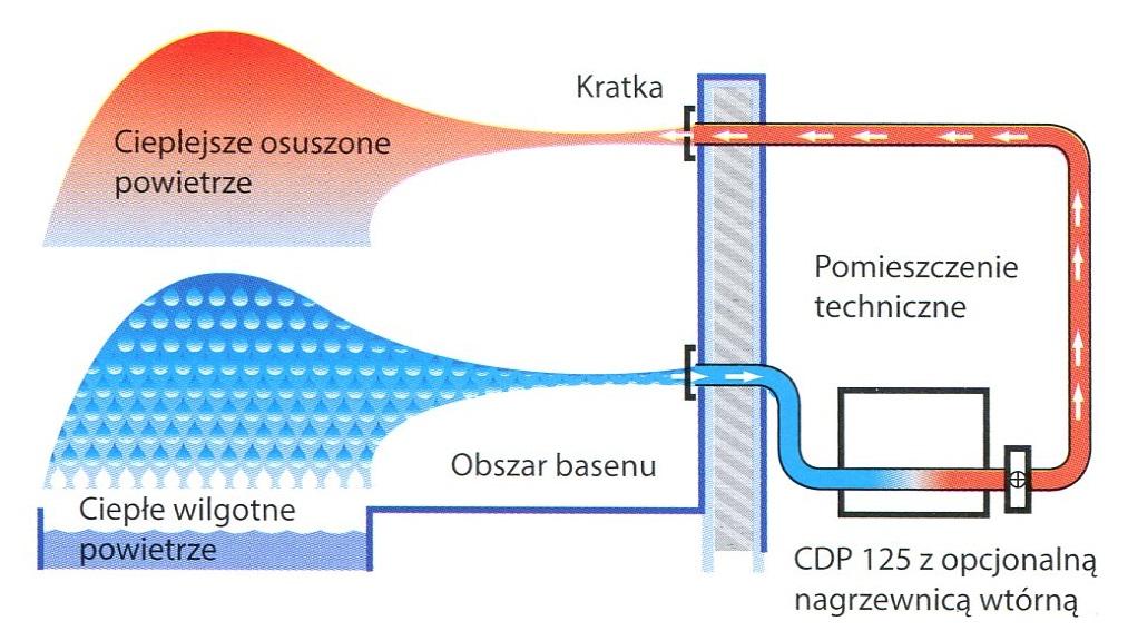 CDP 75
